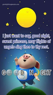 good night wishing images
