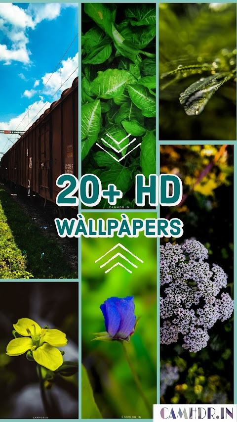 20+ Outstanding Natural Wallpapers for Apple Iphone