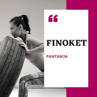 FINOKET