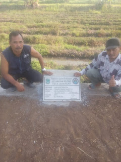 Pemanfaatan Dana Desa, Di Desa Jarangan