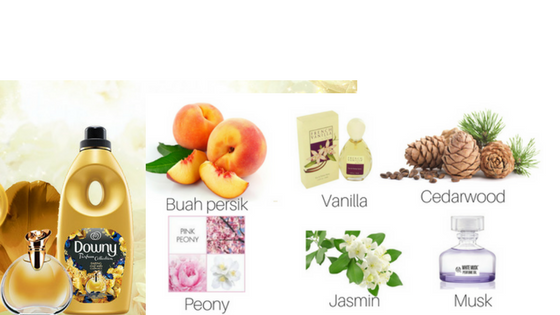 Berani Wangi Dengan Downy Daring, Paduan Harmonis Aroma Parfum Premium, Harum Lebih Tahan Lama Dari  Parfum Mewah