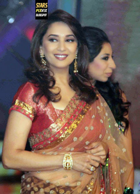 Madhuri Dixit Hottest In Saree  Cute Marathi Actresses -3777