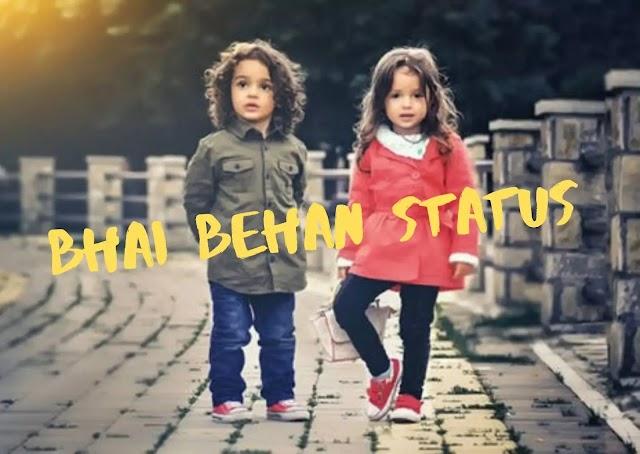 Best Bhai Behan Ka Love Status Shayari in Hindi 2020