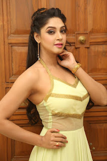 Actress Angana Roy Latest Pohtos in Long Dress at Sri Sri Movie Audio Launch 0003