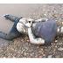 တာခ်ီလိတ္တြင္ လက္ထိပ္ေနာက္ျပန္ခတ္ၿပီး အသတ္ခံထားရသည့္ အေလာင္းတစ္ေလာင္း ေတြ႕ရွိ