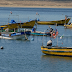 Organizaciones de pescadores artesanales podrán optar a fondo de gobierno para cubrir gastos básicos y operacionales
