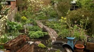 Alys' back garden