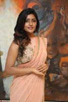 Eesha Rebba in beautiful peach saree at Darshakudu pre release ~  Exclusive Celebrities Galleries 029.JPG