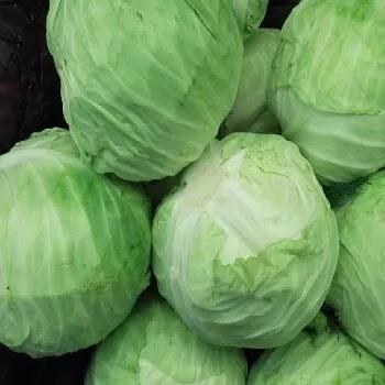 कोबी, cabbage vegetables name in Marathi