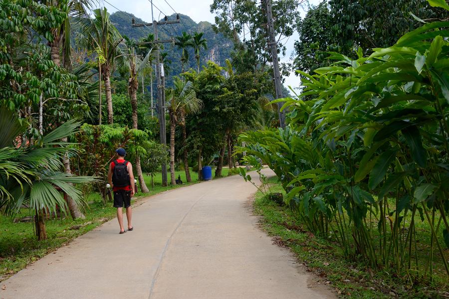 park khao sok tajlandia