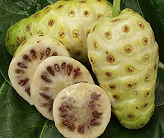 Rich in Benefits, Is Noni Safe to Eat Every Day? - Healthy T1ps