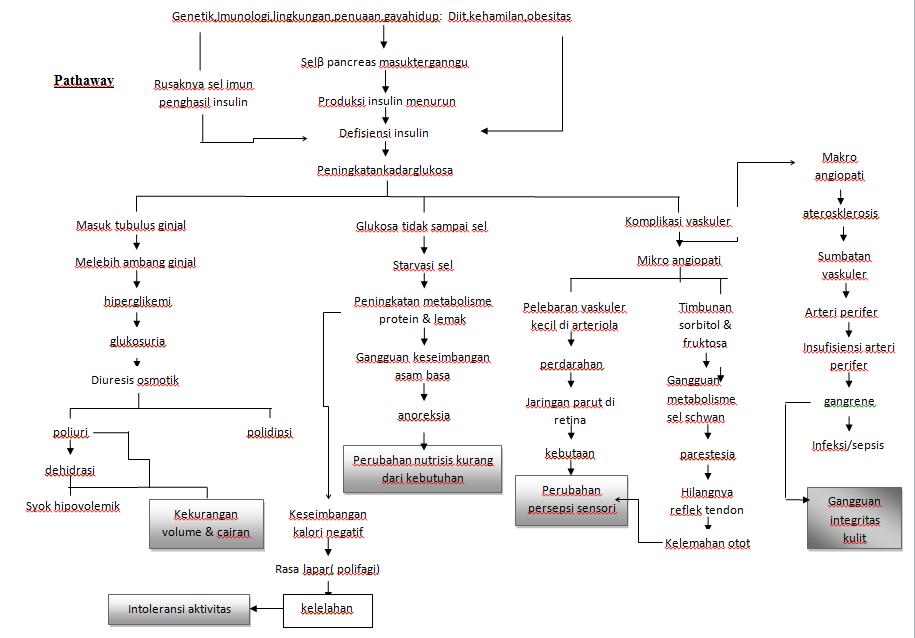 Patofisiologi Gagal Ginjal Kronik Karena Diabetes (#Wajib Diketahui)