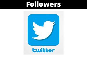 Jual Followers Twitter Murah Terpercaya (100 Followers)