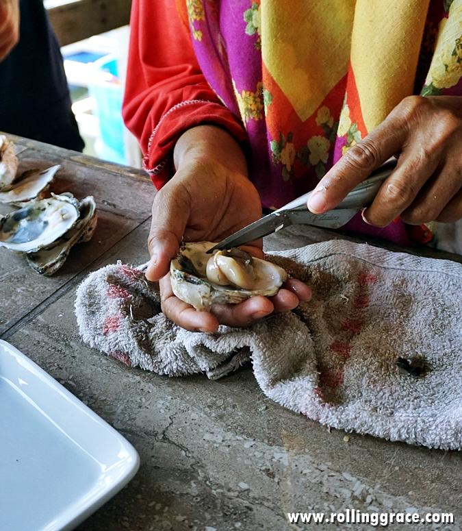 Bakau Hijau oyster farm Sungai Merbok, Kedah