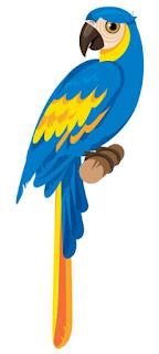 Guacamaya Azul y Amarillo