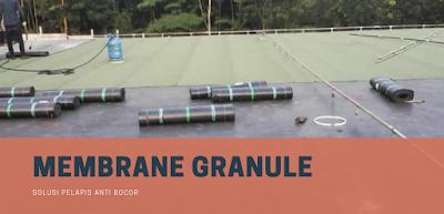 Jenis Waterproofing membrane bakar