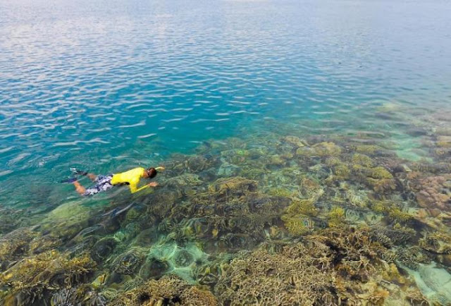 WA 081378363090 Biaya Tour and Travel Pulau Pengalap Snorkeling and Diving