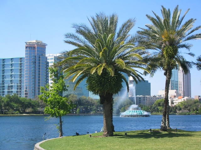 Numerous trees make Orlando one of the greenest Florida neighborhoods