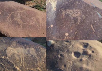 Sculture di ippopotami, cavalli e antilopi nel cratere da impatto Vredefort.