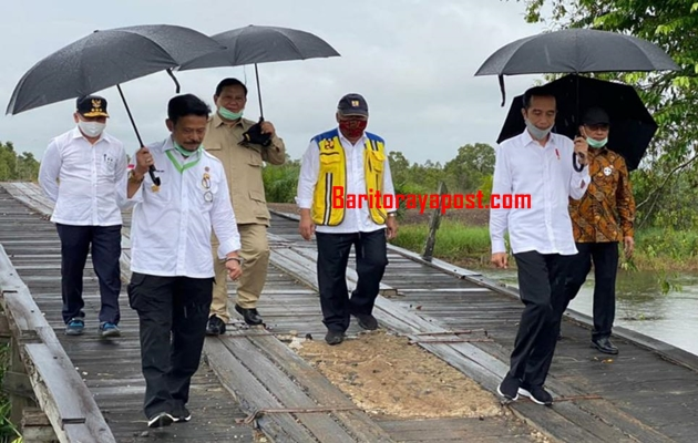 Meski Hujan, Presiden dan Menteri Serta Gubernur Kalteng Semangat Tinjau Lahan Food Estate
