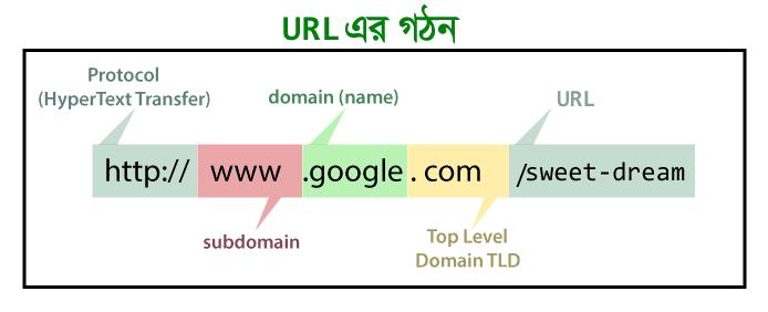 Domain এবং URL এর পার্থক্য কি?