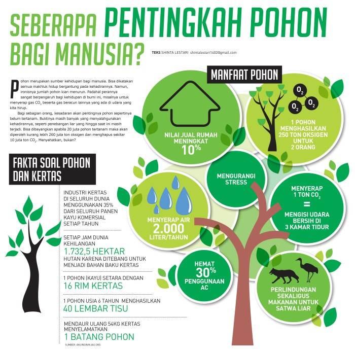 infografis tentang pohon