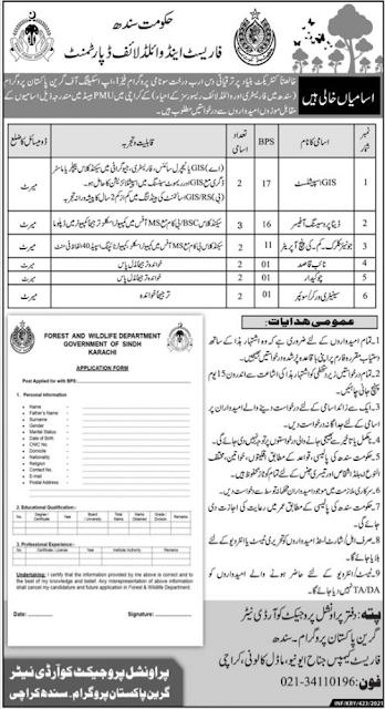 Forest & Wildlife Department Jobs 2021 in Karachi