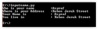 raw_input python