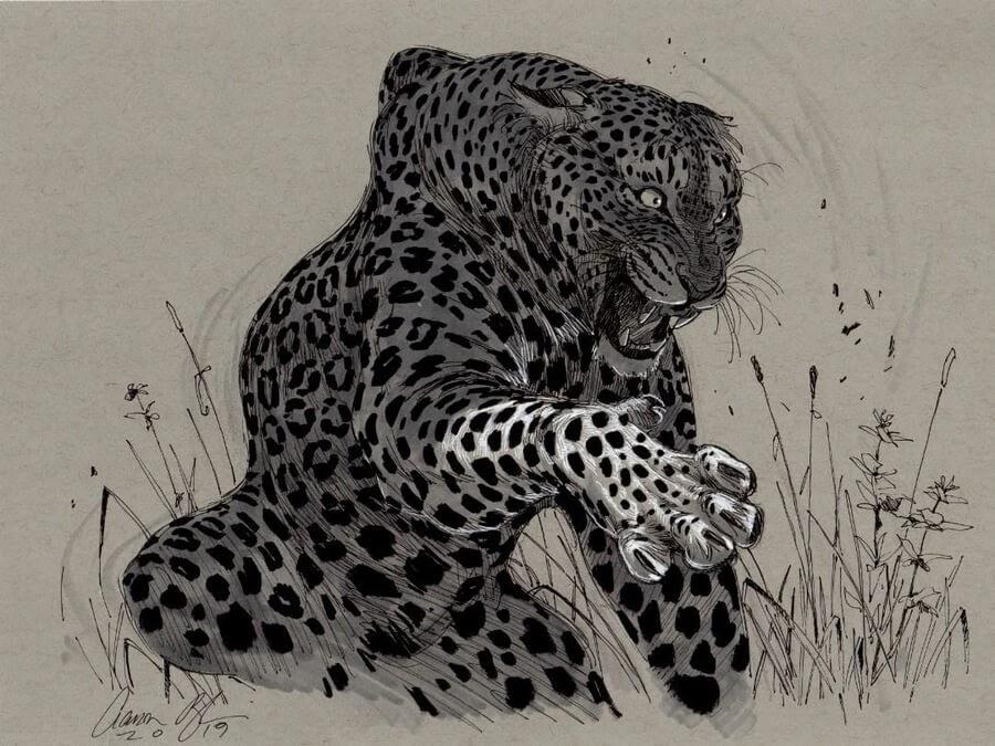 03-Leopard-Snarling-Aaron-Blaise-www-designstack-co