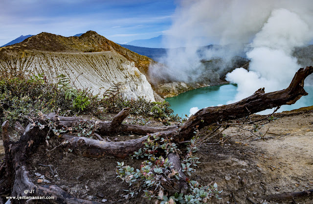 Come to java visit o Ijen volcano and stay in Tamansari Village, enjoy your holidays see Blue Fire mount Ijen and enjoy local activity of  Tamansari Village.
