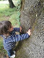 toucher nature arbre sens éveil nature