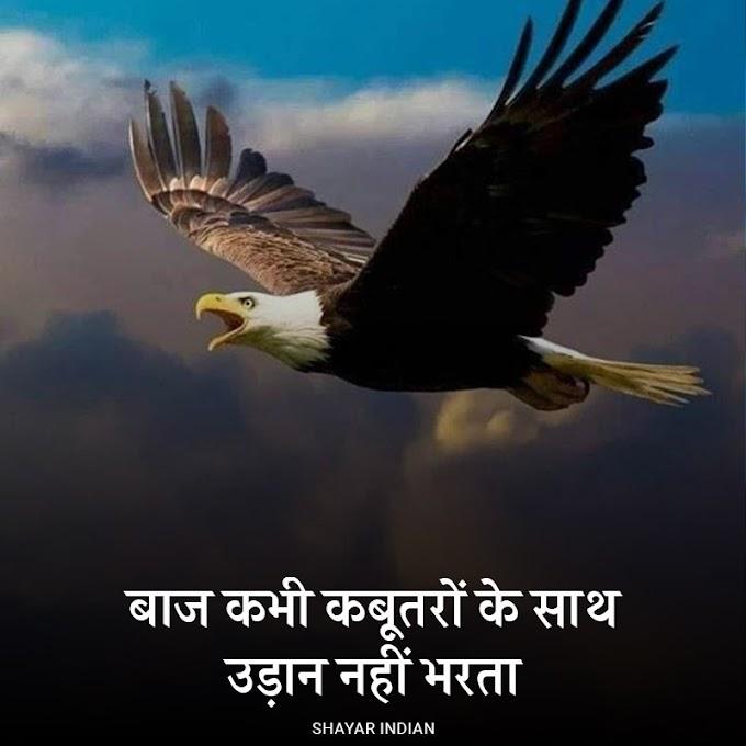 बाज - Baaz 2 Line Status Image in Hindi