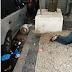 Ambulante morre após ser atingido por botijão de gás lançado de apartamento