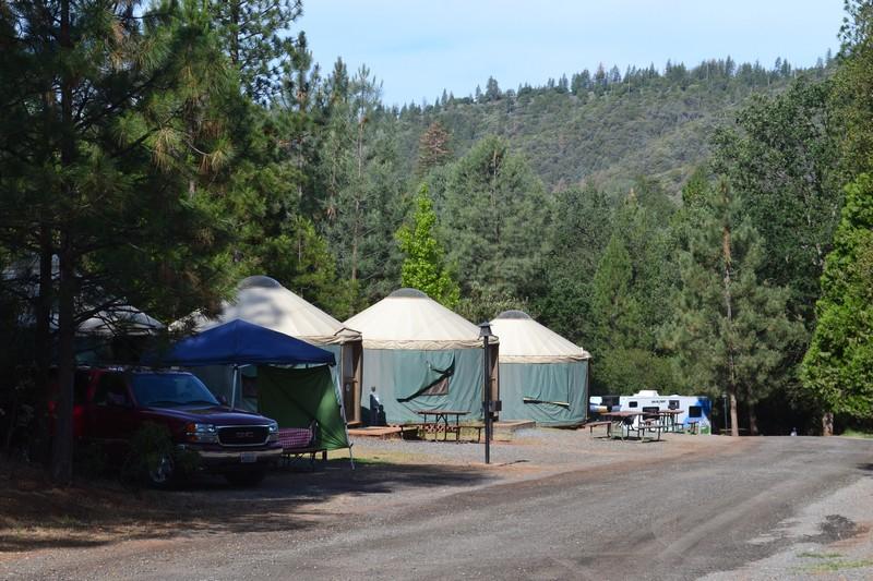 californie, camping, pine bungalow