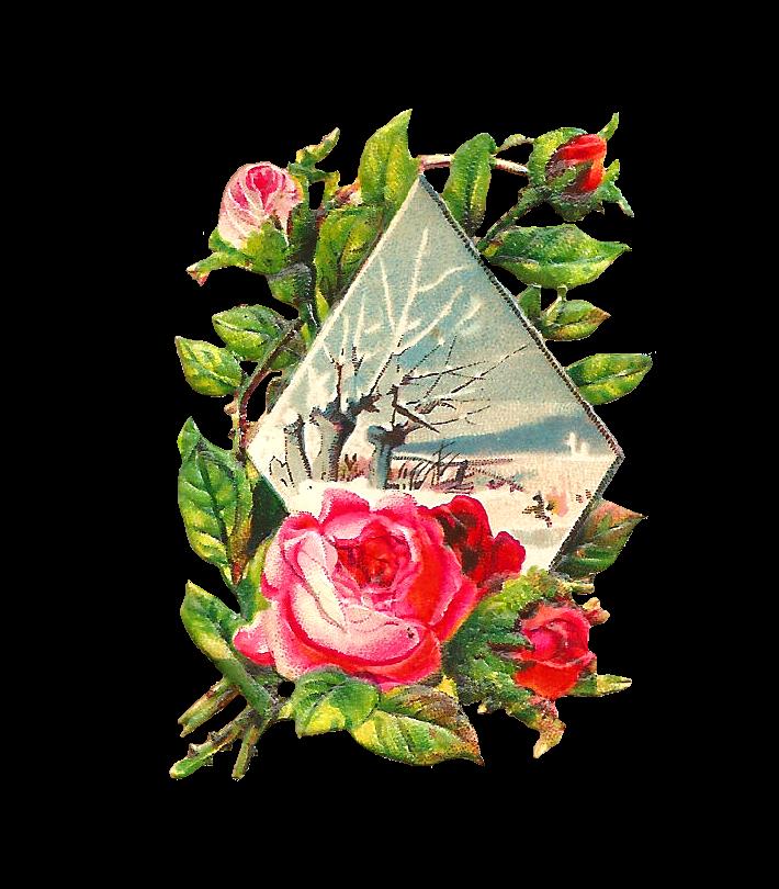 Antique Images: Free Flower Graphic: Pink Rose Clip Art ...