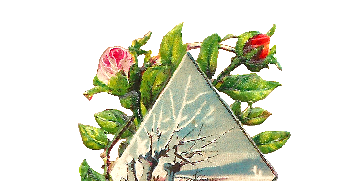 Antique Images Free Flower Graphic Pink Rose Clip Art