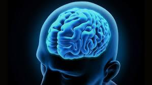 الدماغ تقوم بإعادة ضبط للإعدادات أثناء النوم!