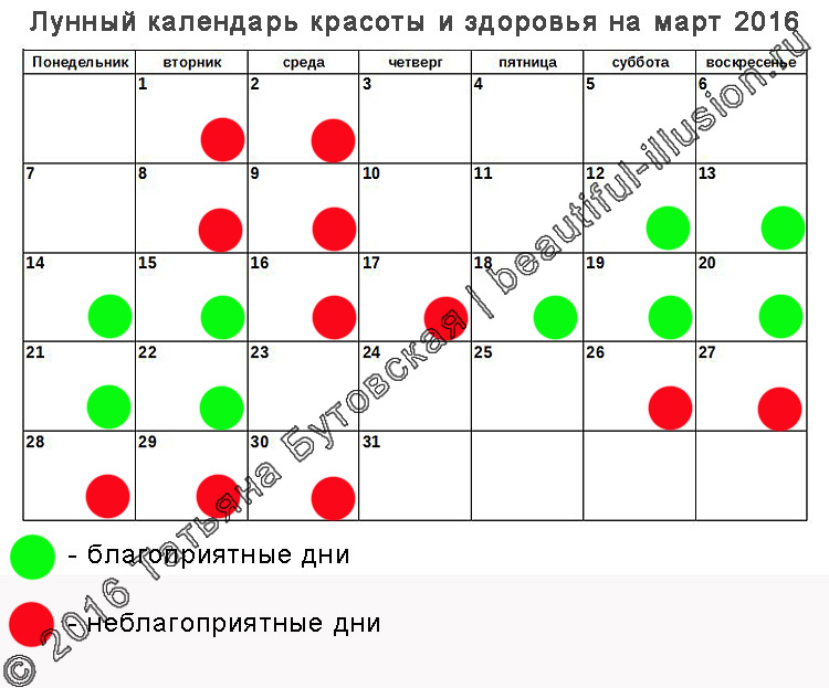 Организации праздников москва область