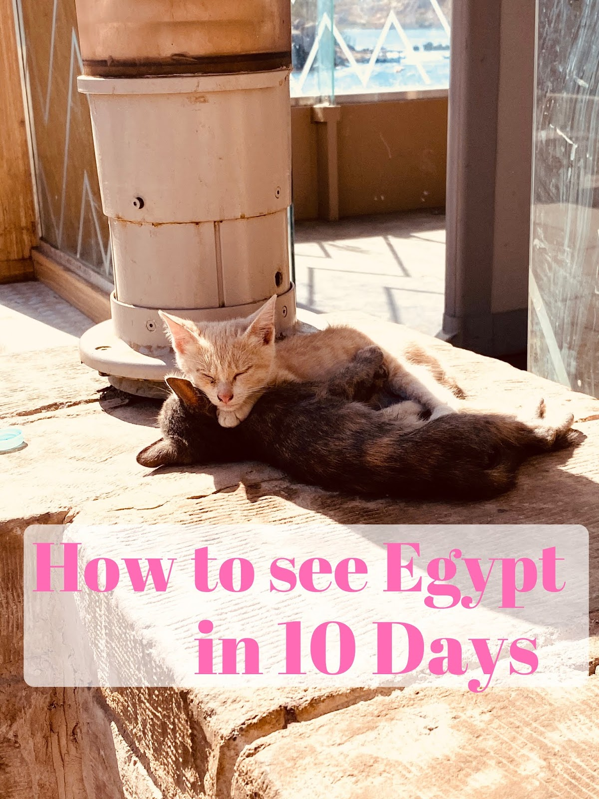 visiting egypt, egypt itinerary, Egypt travel, traveling to egypt, 10 days in egypt, how to see egypt in a week, egypt in a week, egypt travels, hot air balloon, pyramids, citadel, churches, mosques, horseback riding in egypt, riding a camel in egypt, camel rides, aswan, luxor,