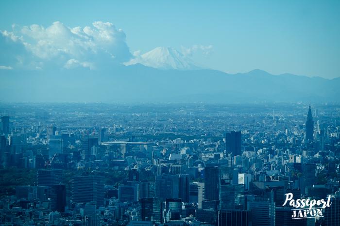 Vue sur le mont Fuji depuis la Skytree