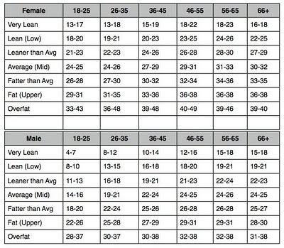 BODY FAT PERCENTAGE HOW LONG TILL MY ABS SHOW UP? SAMSON PERSONAL - body fat chart