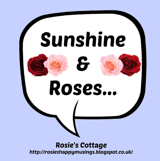 Sunshine & Roses - an update on the tiny miniature roses from Christmas