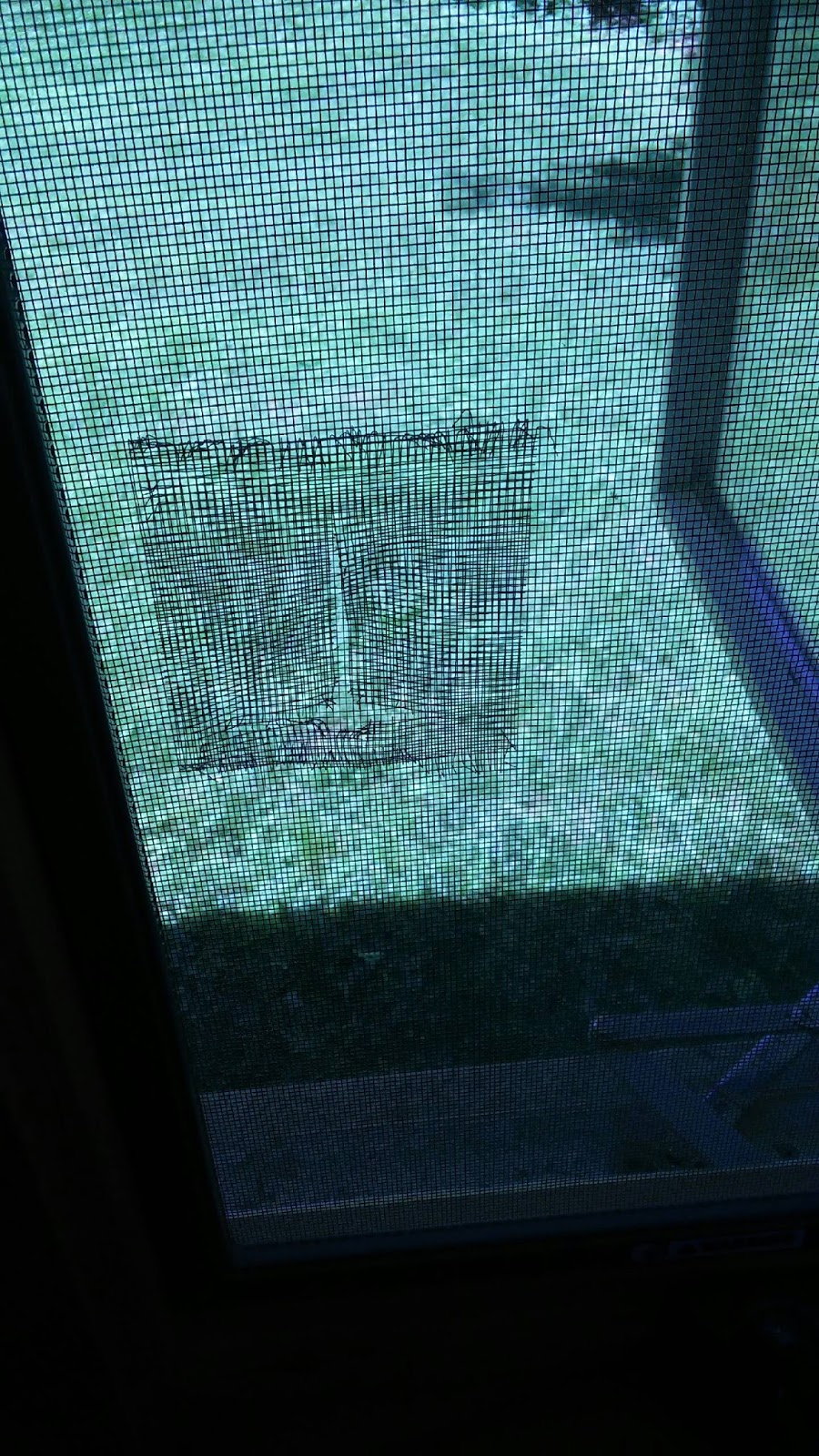 Ct on a budget a quick diy project window screen repair for Window screen replacement