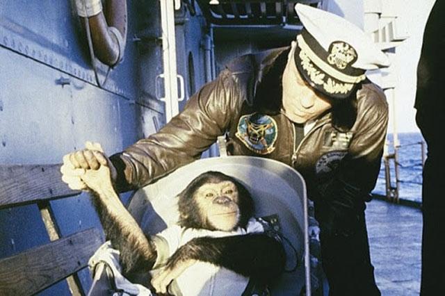 Simpanse ke luar angkasa