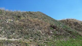 Андроновка, Каменка. Породные отвалы превратились в горные хребты