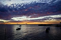 Visitindonesia; Derawan Islands, Snorkeling Together Alongside Light-Green Turtle As Well As Jellyfishes Inward Eastward Kalimantan