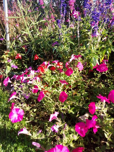 LACN - voyage - france - le havre - normandie - jardins suspendus