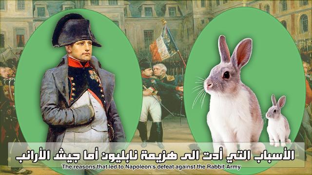 هزيمة نابليون على يد قطيع الارانب كيف حصل ذلك؟