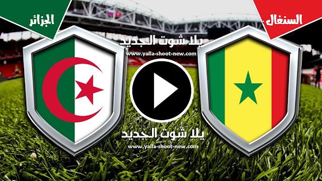 مشاهدة مباراة الجزائر والسنغال بث مباشر 19-7-2019 كاس الامم الافريقية