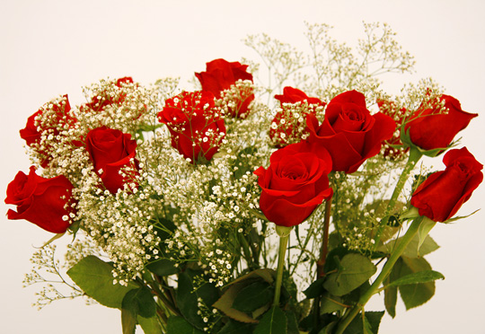 Cosas Para Compartir Ramos De Rosas - Fotos-ramos-de-flores